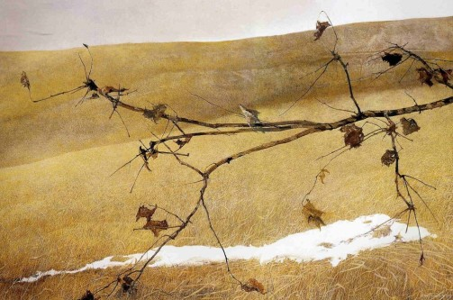andrew-wyeth-long-limb-1998